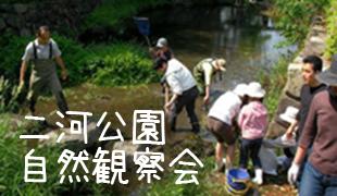 二河公園自然観察会